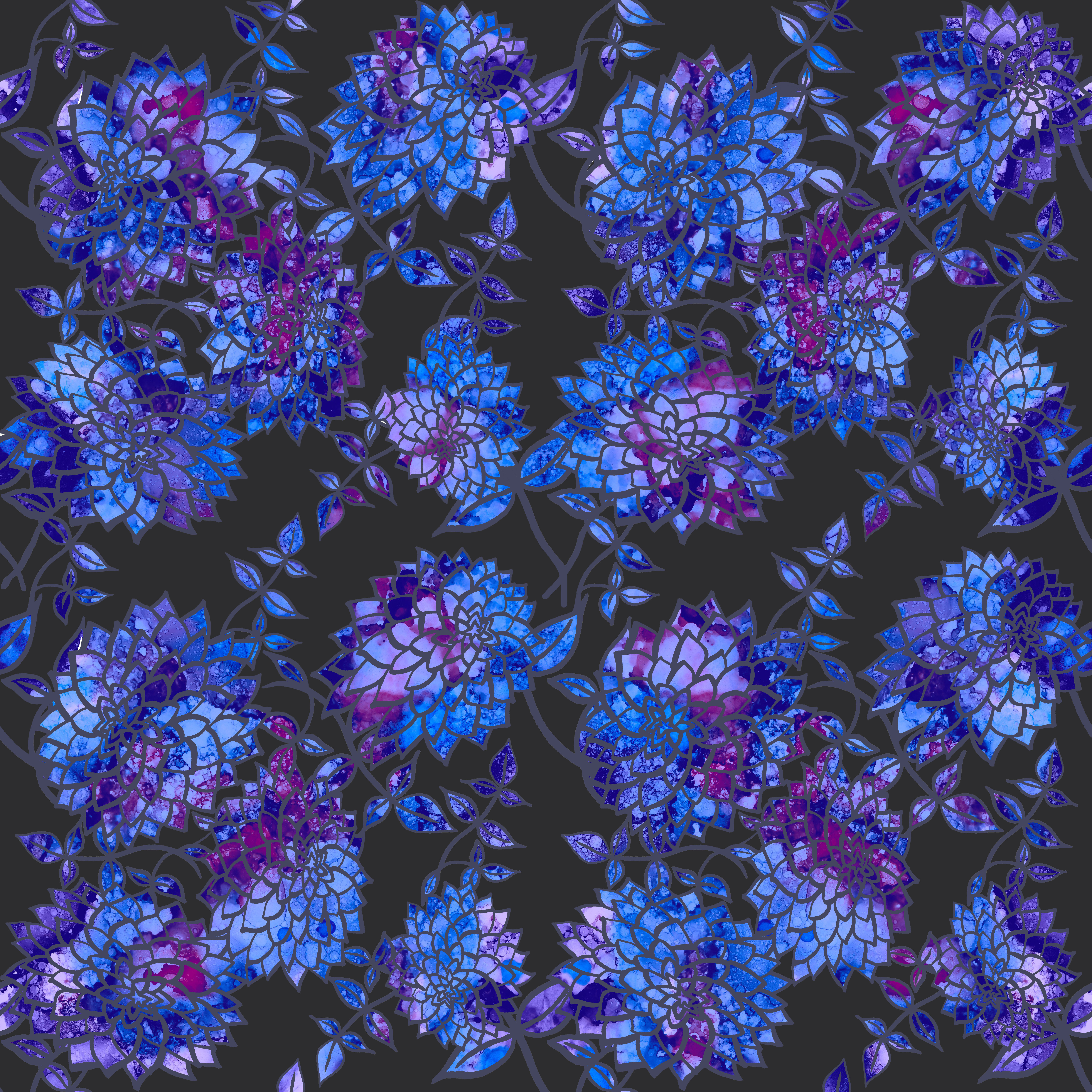 dahlia-blue & purple on blk